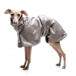 SWANSEA SPECIAL WHIPPET GREYHOUND COAT
