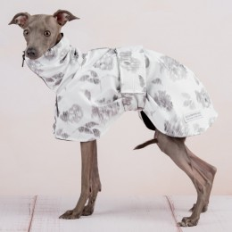 THE PRINTED RAINCOAT 4 WHIPPETS & LARGE SIZES