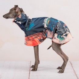 THE ROMBI RAINCOAT 4 WHIPPETS & LARGE SIZES