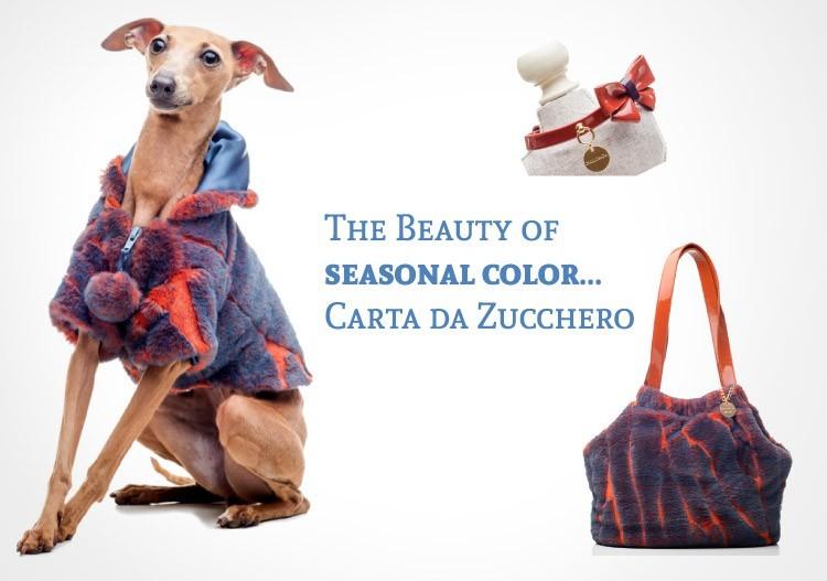 The Beauty of seasonal color Carta da Zucchero