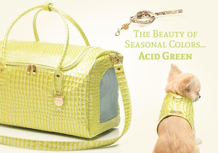 The Beauty of Seasonal Colors Acid Green